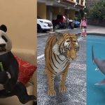 These Google 3D animals can keep you company during the quarantine